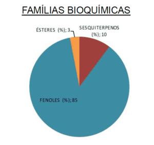 Clavo Hojas