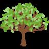 Árbol PuntosMed aromaterapia, aceites esenciales, ayurveda