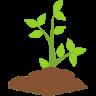Arbusto PuntosMed aromaterapia, aceites esenciales, ayurveda